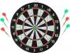 Baili- Flocked Dart bord review test